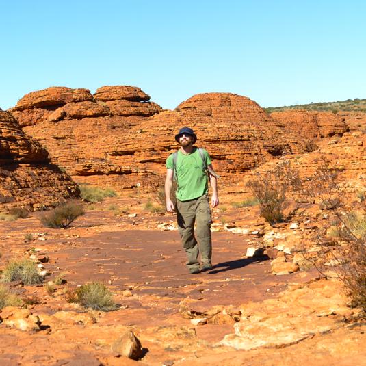 neil bush walking blog
