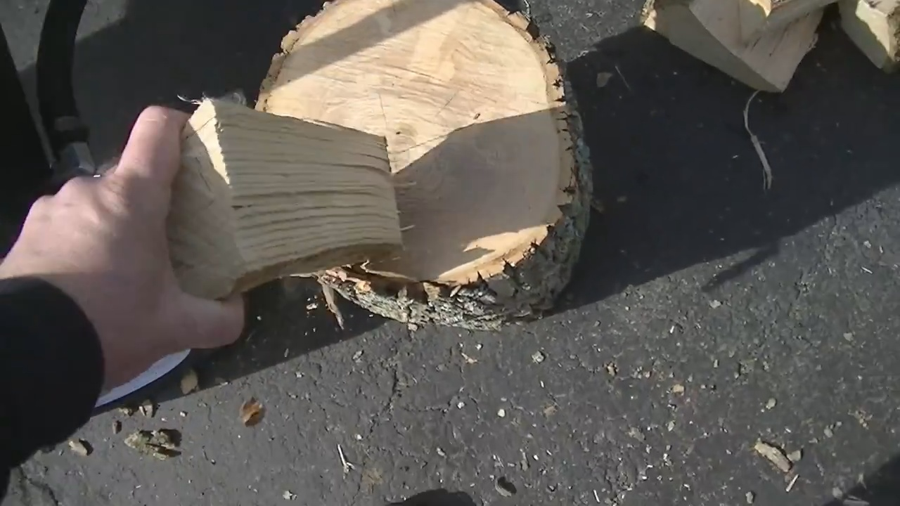 Is Ash Good Firewood
